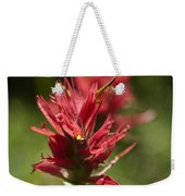 Painted-cups Of The Hillside - 4 Weekender Tote Bag
