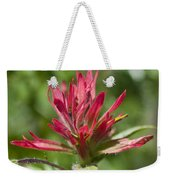 Painted-cups Of The Hillside -1 Weekender Tote Bag