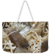 Pair Of Transluscent White Snapping Weekender Tote Bag