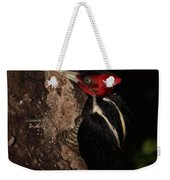 Pale-billed Woodpecker Weekender Tote Bag