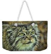 Pallas Cat Weekender Tote Bag