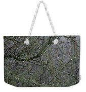 Palo Verde In The Rain Weekender Tote Bag
