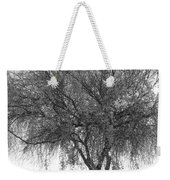 Palo Verde Tree 2 Weekender Tote Bag