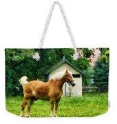 Palomino In Pasture Weekender Tote Bag