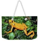 Panamanian Golden Frog Atelopus Zeteki Weekender Tote Bag