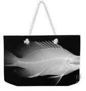 Panther Grouper X-ray Weekender Tote Bag