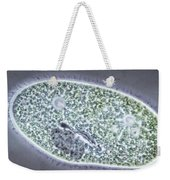 Paramecium Bursaria Weekender Tote Bag by M. I. Walker