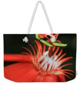 Passiflora Vitifolia - Scarlet Red Passion Flower Weekender Tote Bag