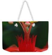 Passion Flower Crown Weekender Tote Bag