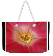 Patunia Central Weekender Tote Bag