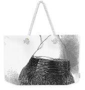 Pauline Viardot-garcia Weekender Tote Bag