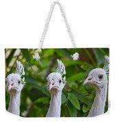 Peacocks Weekender Tote Bag