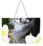 Peanut The Cat And Jonquils Weekender Tote Bag