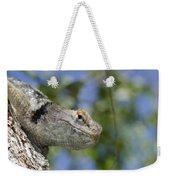 Peek-a-boo Lizard Weekender Tote Bag