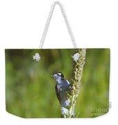 Peekaboo Birdie  Weekender Tote Bag