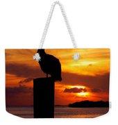 Pelican Sundown Weekender Tote Bag by Karen Wiles