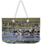 Pelicans At Knuckey Lagoon Weekender Tote Bag