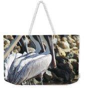 Pelicans Of Keaton Beach Canal Weekender Tote Bag
