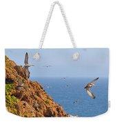 Pelicans Off The Point Weekender Tote Bag