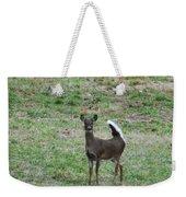 Pennsylvania White Tail Deer Weekender Tote Bag