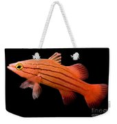 Peppermint Basslet Weekender Tote Bag