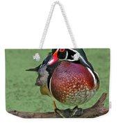 Perched Wood Duck Weekender Tote Bag
