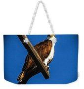 Perching Osprey Weekender Tote Bag