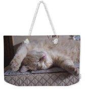 Percy Cat Sleep Stylist Weekender Tote Bag