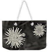 Perennial Sow-thistle Monochrome Weekender Tote Bag
