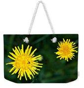 Perennial Sow-thistle Weekender Tote Bag