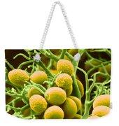Peronospora Parasitica Weekender Tote Bag