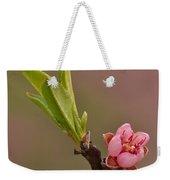 Petite Peach Weekender Tote Bag