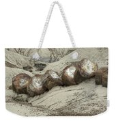 Petrified Forest 1 Weekender Tote Bag