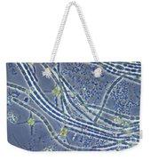 Phytoplankton, Lm Weekender Tote Bag