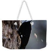 Pileated Woodpecker Dryocopus Pileatus Weekender Tote Bag