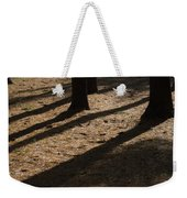 Pines Of Msu Weekender Tote Bag