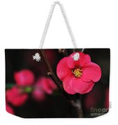 Pink Blossom In The Evening Weekender Tote Bag