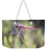 Pink Dragonfly In The Marsh Weekender Tote Bag