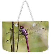 Pink Dragonfly With Sparkly Wings Weekender Tote Bag