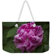 Pink English Rose Weekender Tote Bag