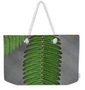 Pinnate Weekender Tote Bag