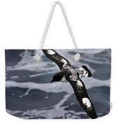 Pintado Petrel - Ancient Mariner Weekender Tote Bag