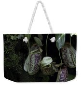 Pitcher Plant Inside The National Orchid Garden In Singapore Weekender Tote Bag