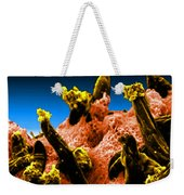 Plasmodium Gallinaceum, Sem Weekender Tote Bag by Science Source