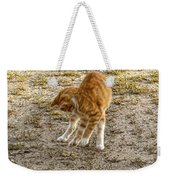 Playful Yellow Kitty Weekender Tote Bag