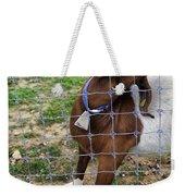 Please Exonerate Me 2 - Billy Goat Weekender Tote Bag