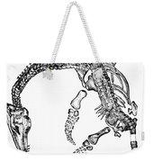 Plesiosaurus Weekender Tote Bag by Science Source