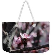 Plum Blossoms 9 Weekender Tote Bag