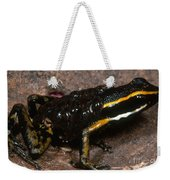 Poison Arrow Frog With Tadpoles Weekender Tote Bag