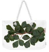 Poison Oak Branch Weekender Tote Bag
